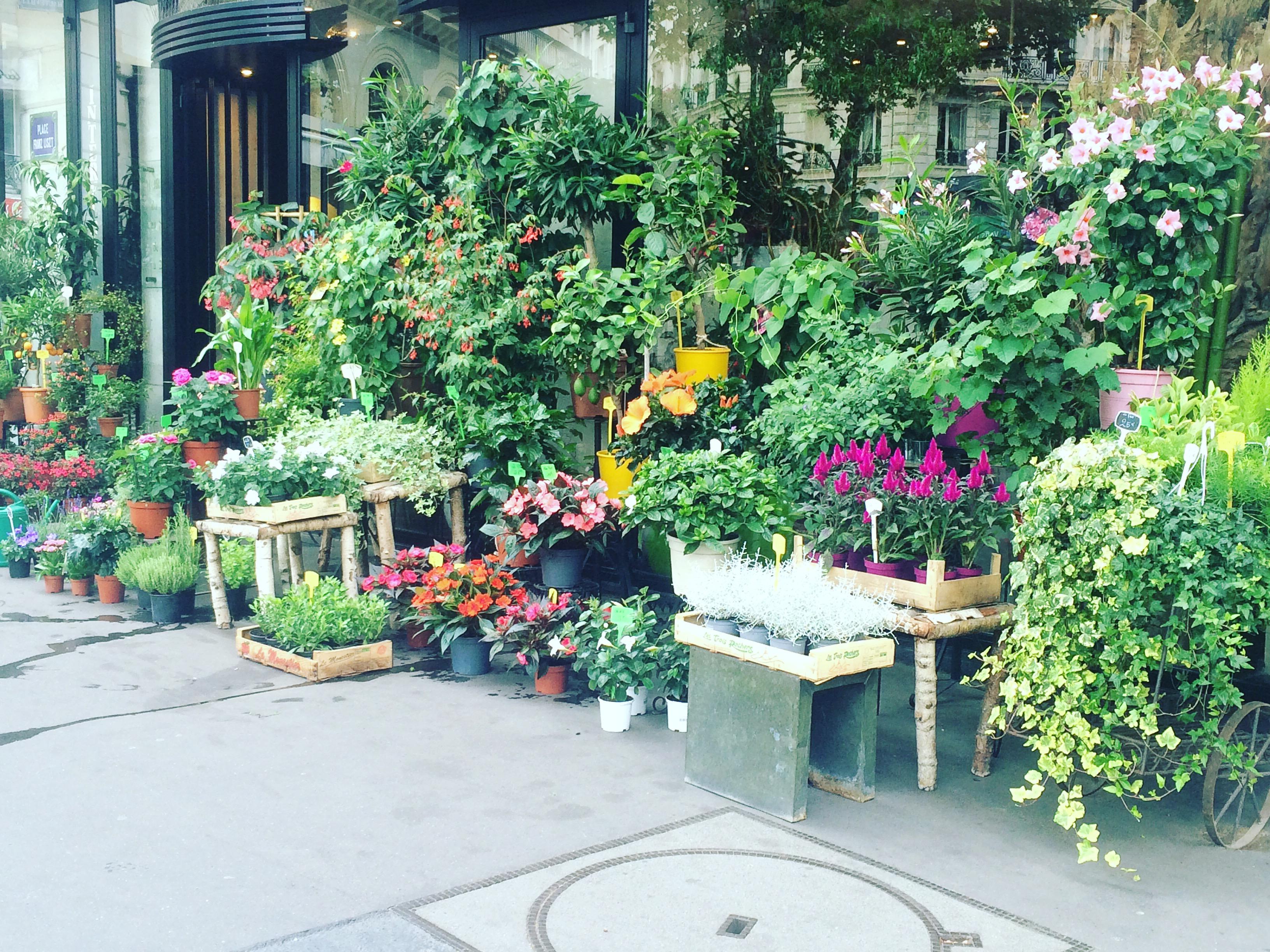 10 places for a fabulous Paris getaway - Summer Edition